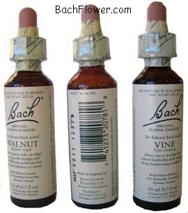 Original Bach Flower Remedies® - www.